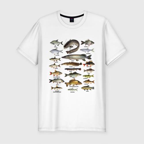 Мужская футболка хлопок Slim Популярные виды рыб