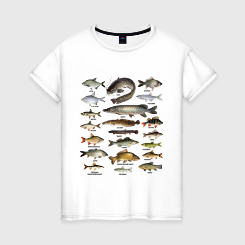 Женская футболка хлопок Популярные виды рыб