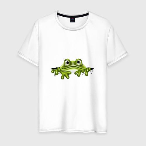 Мужская футболка хлопок Жаба