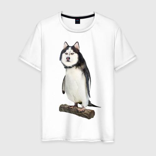 Мужская футболка хлопок Хаскогвин