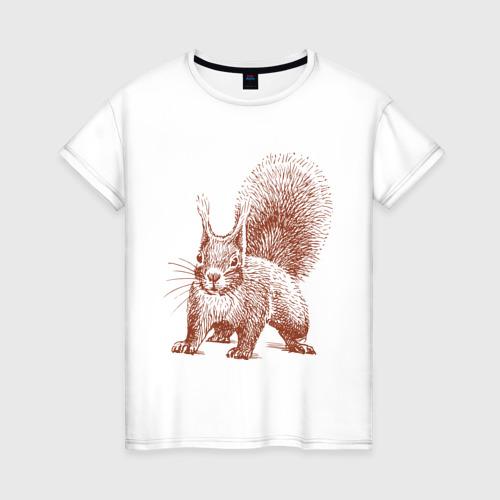 Женская футболка хлопок Самая милая белочка
