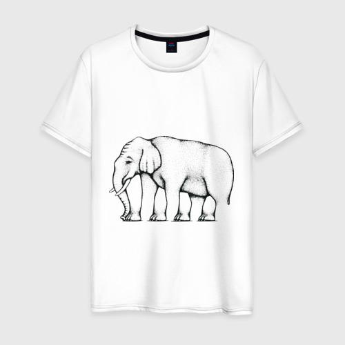 Мужская футболка хлопок Сколько ног у слона