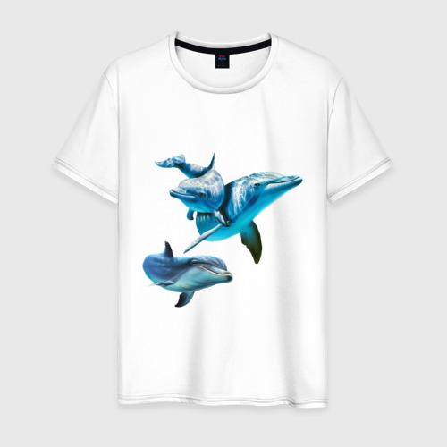 Мужская футболка хлопок Дельфины