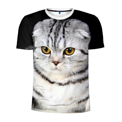 Мужская футболка 3D спортивная Кот