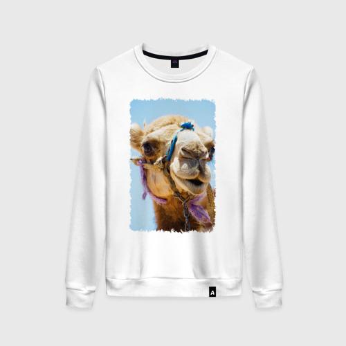 Женский свитшот хлопок Верблюд