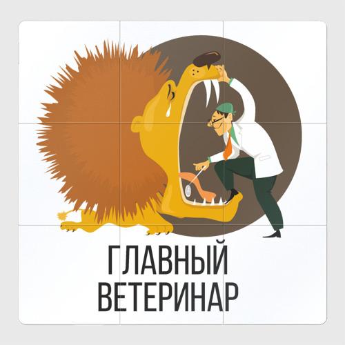 Магнитный плакат 3Х3 Ветеринар