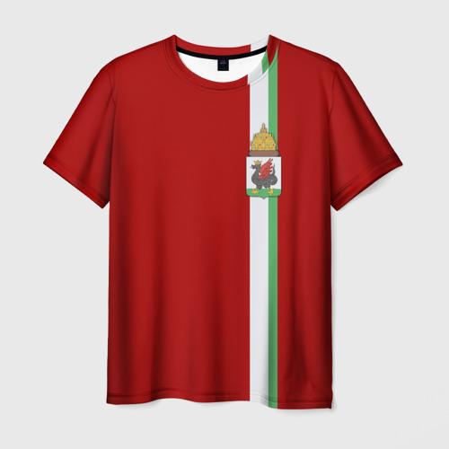 Мужская футболка 3D Казань, лента с гербом