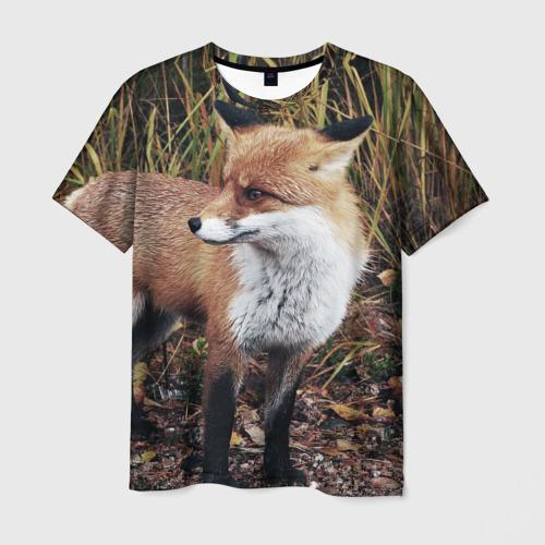 Мужская футболка 3D Лиса с пушистым хвостом