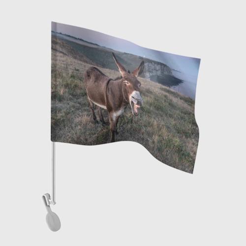 Флаг для автомобиля Осёл